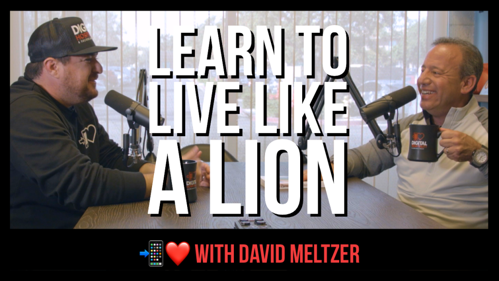 Learn to Live Like a Lion featuring David Meltzer